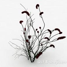 无叶马尾状植物3d模型下载