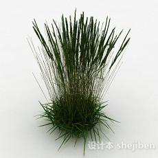 绿色茅草3d模型下载