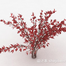 红色树叶观赏型植物3d模型下载