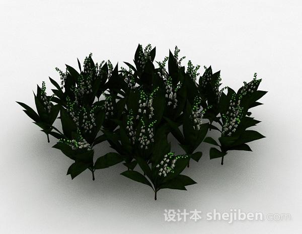 园林观赏型植物模型