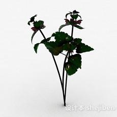 室外绿色花卉3d模型下载
