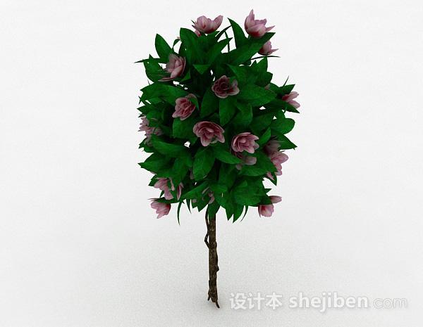 室外植物花卉模型