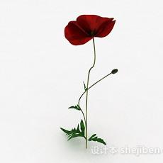 红色花卉植物3d模型下载