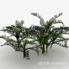 细叶装饰花卉植物3d模型下载