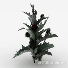 花园装饰植物花卉3d模型下载