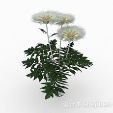 白色花卉家居摆设品3d模型下载