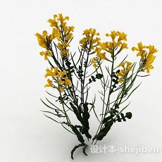 黄色油菜花3d模型下载