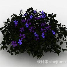 紫色铁线莲观赏花卉3d模型下载