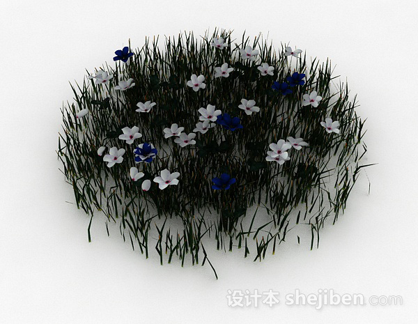 室外白色装饰花卉