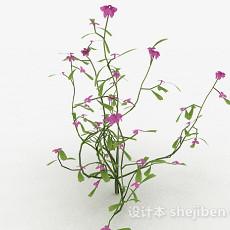 紫色花卉植物3d模型下载