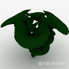 粽叶植物3d模型下载