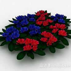 观赏型户外植物3d模型下载