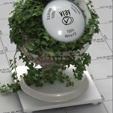 vr植物vr材质下载-2